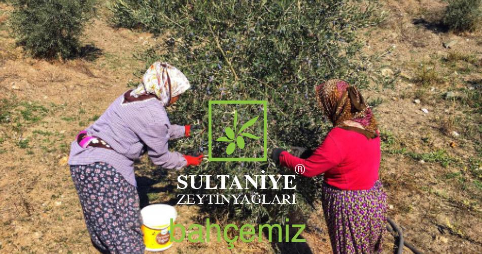 Selçuk İzmir Sultaniye