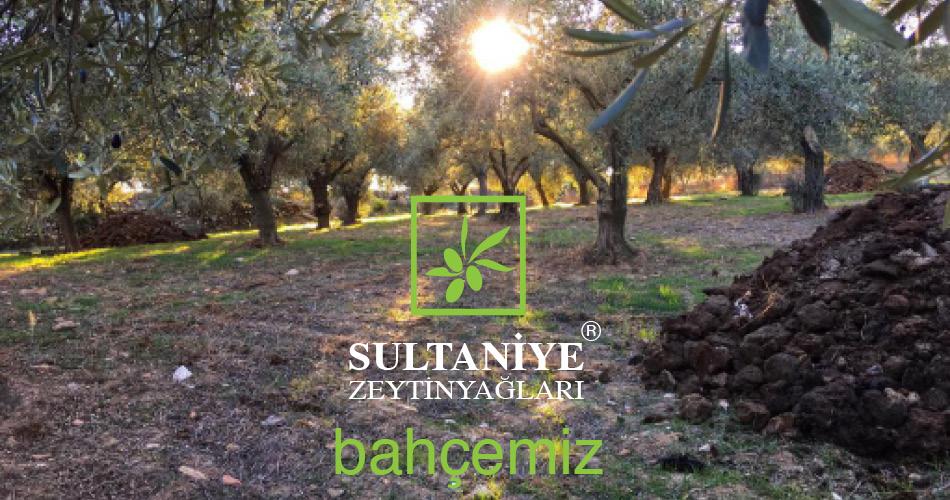 Bahçemiz Selçuk Sultaniye